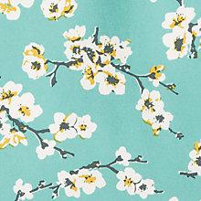 blossom spring time