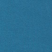 blue sport rib