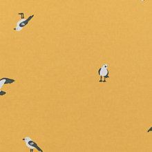 frisian seagull