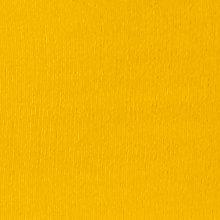 mustard leg