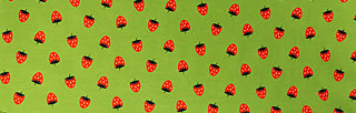 amelie longsie , strawberry soucre, Shirts, Grün