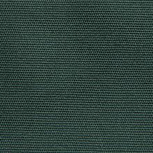 sycamore green