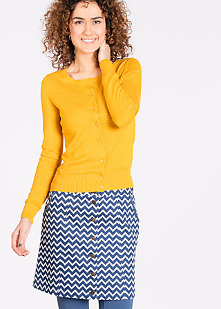 erste klasse skirtlet, royal rich kid, Woven Skirts, Blau