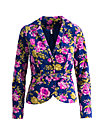 railway to heaven blazy, persian poppy, Blazer, Blau